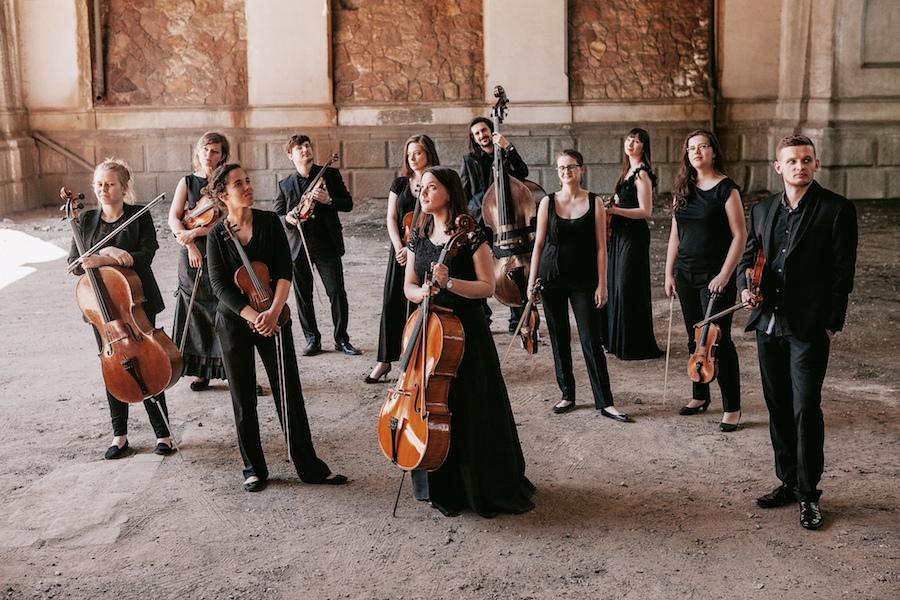 Orkiestra Demokratyczna